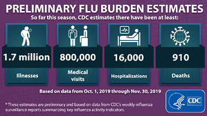 CDC Flu Estimates
